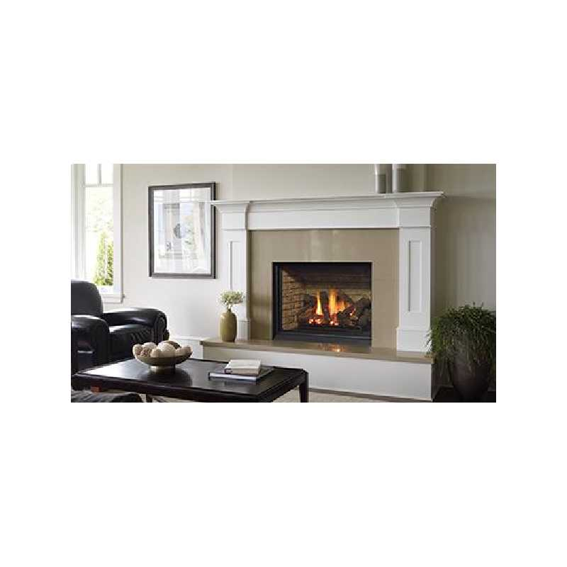 B36xtce Gas Fireplace, Traditional Gas Fireplaces, Grills, Miami FL