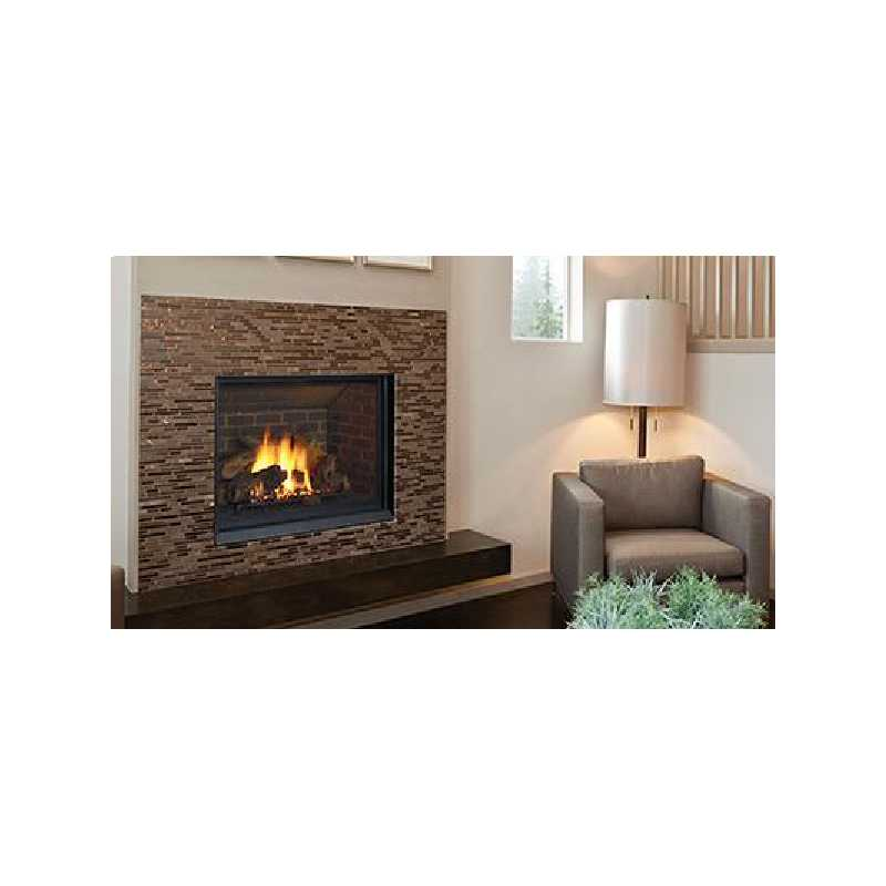B41xtce Gas Fireplace, Traditional Gas Fireplaces, Grills, Miami FL