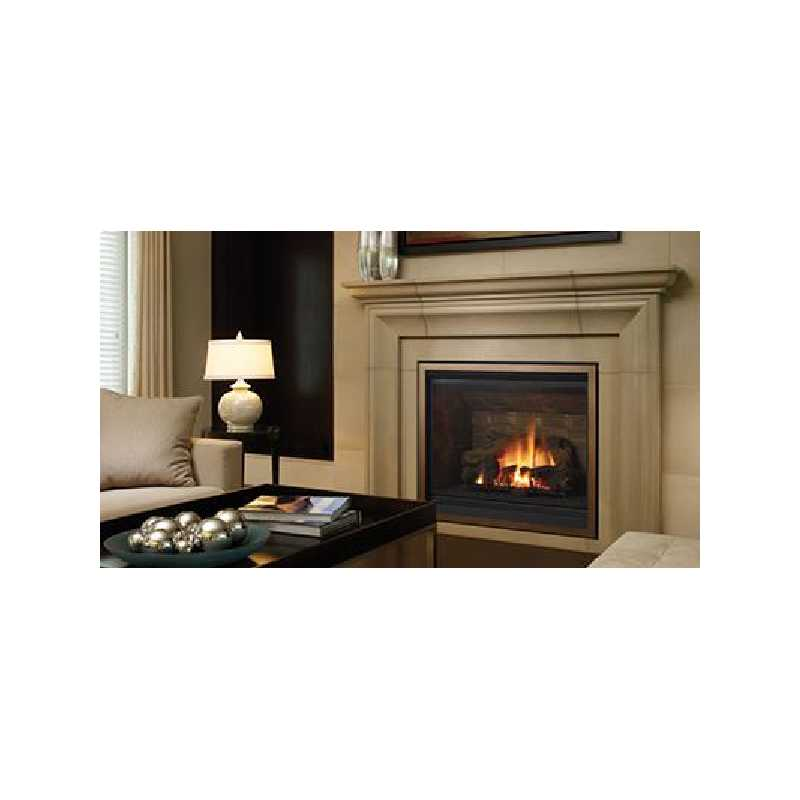 B41xte Gas Fireplace, Traditional Gas Fireplaces, Grills, Miami FL
