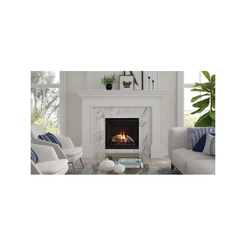 G600ec Gas Fireplace, Traditional Gas Fireplaces, Grills, Miami FL