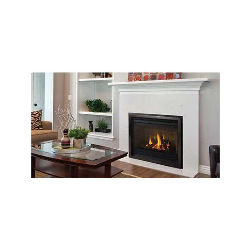 P36 Gas Fireplace, Traditional Gas Fireplaces, Grills, Miami FL