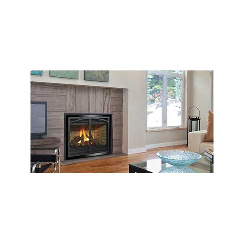 P36d Gas Fireplace, Traditional Gas Fireplaces, Grills, Miami FL