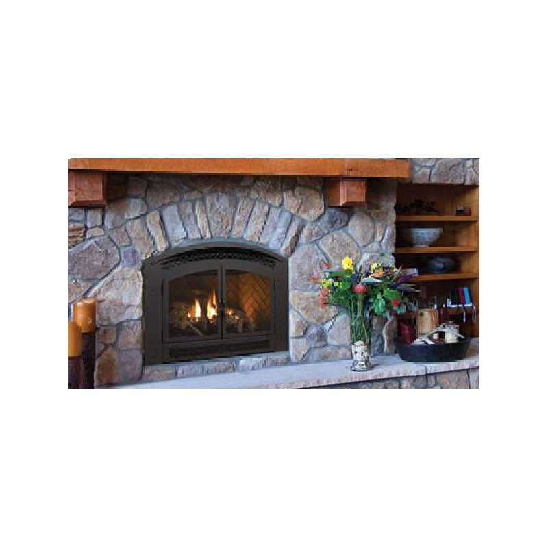 P90e Gas Fireplace, Traditional Gas Fireplaces, Grills, Miami FL